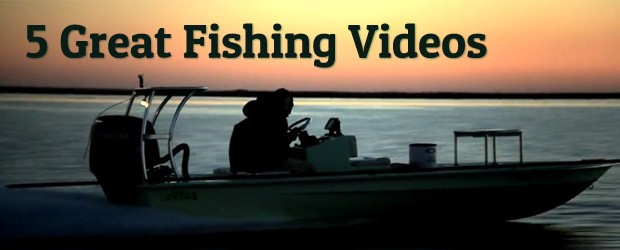 5 Fishing Video Examples
